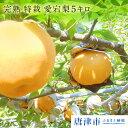 【ふるさと納税】梨の王様 完熟 特栽 愛宕梨5キロ