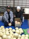 【ふるさと納税】錦のホームランメロン【5kg(4〜5玉)】クレジット限定 【果物類・フルーツ】 お届け:2019年4月末〜5月初旬