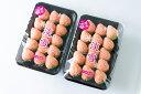 【ふるさと納税】白いちご「淡雪」・2パック入×1箱