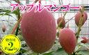 【ふるさと納税】【2019年発送】農家さん直送!アップルマンゴー約2kg 贈答用