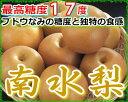 【訳あり】最高糖度17度 梨 長野産 南水梨 約2.3キロ 大玉5〜7個入 南水