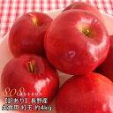 訳あり 減農薬 長野 生食用 紅玉 りんご 約4kg 小玉16〜30個入 リンゴ 林檎 産地直送 小山 NG 9g