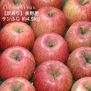 訳あり 減農薬 長野 サンふじ りんご 約4.5kg 12〜25個入 リンゴ 林檎 産地直送 小山