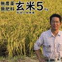 無肥料栽培米5Kg//玄米|福岡県産 夢つくし筑後久保農園