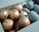 【送料無料※一部地域除く】訳あり北海道産野菜2品セット(じゃがいも5kg・たまねぎ4kg)