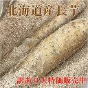 【訳あり】北海道産長芋(約10kg)