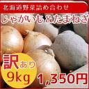 【訳あり】北海道産野菜2品セット(じゃがいも5kg・たまねぎ4kg)