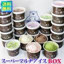 【送料無料】フロム蔵王 HybridスーパーマルチアイスBOX24【アイスクリームセット】