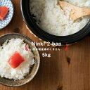 【2年産】熊本県産 森のくまさん 白米5kg 【送料無料】/お米/熊本県産 こめたつ【米 5kg 送料無料】