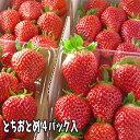 とちおとめ いちご (4パック入2L〜3L)。同一送付先に2箱買うと送料無料♪栽培方法にこだわった甘いイチゴ【発送時期:2月中旬頃〜5月上旬頃まで発送予定】