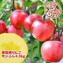 福島県産 サンふじ りんご 4.5kg箱 (12〜25玉入) 訳あり ご家庭用 リンゴ 大きさ 不揃い 傷