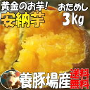 安納芋3kgさつまいも!あんのういも豚が育てたサツマイモ 黄金の蜜芋アンノウイモ千葉産
