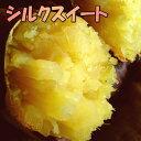 3箱まで送料同一!シルクスイート【2kg増量】3kg→5kg☆さつまいも!豚が育てたサツマイモ 甘くなめらかな食感なさつま芋千葉県香取市産