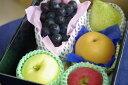 フルーツ頒布会「12ヶ月」果物コース定期購入 ※送料は別途12回分加算されます※