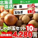 お歳暮 野菜セット ギフト北海道産 じゃがいも じゃが玉セット 男爵5kg(LMサイズ)&玉ねぎ5kg(Lサイズ)合計10kg【お届け日時指定可 ジャガイモ だんしゃく 男爵薯 イモ 玉ねぎ 産地直送 セット】