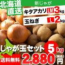 お歳暮 野菜セット ギフト北海道産 じゃがいも じゃが玉セット キタアカリ3kg(LMサイズ)&玉ねぎ2kg(Lサイズ)合計5kg【お届け日時指定可 ジャガイモ きたあかり キタアカリ 北海道産野菜 イモ 玉ねぎ セット】