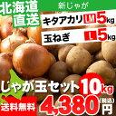 野菜セット ギフト北海道産 じゃがいも じゃが玉セット キタアカリ5kg(LMサイズ)&玉ねぎ5kg(Lサイズ)合計10kg【お届け日時指定可 ジャガイモ きたあかり 北海道産野菜 玉ねぎ セット】【0109P10】