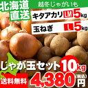越冬じゃがいも 北海道産 じゃが玉セット キタアカリ5kg(LMサイズ)&玉ねぎ5kg(Lサイズ)合計10kg【お届け日時指定可 ジャガイモ きたあかり キタアカリ 北海道産野菜 イモ 玉ねぎ セット】