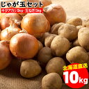 今季出荷開始中!越冬じゃがいも 送料無料 北海道産 じゃが玉セット キタアカリ 5kg(M-2L混合)&玉ねぎ 5kg(L〜L大) 合計10kg【10キロ 10キロ 10kg 秋野菜 ジャガイモ きたあかり 北海道 野菜 詰め合わせ】