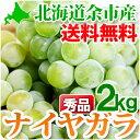 ナイヤガラ 秀品L〜2Lサイズ2kg ぶどう 北海道 余市産 ナイアガラ 白ぶどう 果物 フルーツ 贈り物 内祝 お返し ギフト お取り寄せ 送料無料 秋の味覚