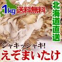 大きな株でお届け 【 舞茸 (えぞまいたけ) 1kg(2株) 】 北海道産 マイタケ 送料無料