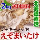きのこギフト 【 蝦夷 舞茸 ( えぞ まいたけ ) 2kg(3〜4株)】 北海道産 極めて天然環境に近い状態で生産しています。 【 優勝キャンペーン対象商品 】