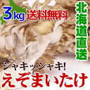 蝦夷舞茸 (えぞまいたけ) 3kg(5〜6株)北海道産 きのこ ママ割 ポイント5倍