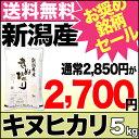 キヌヒカリ 5kg 29年産 新潟産 米【送料無料】(沖縄を除く)【お奨め銘柄セール】