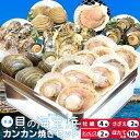 貝の海宝焼 牡蠣4個 さざえ2個 ホンビノス貝2個 ほたて片貝10個 冷凍便配送 冷凍貝セット(牡蠣ナイフ、片手用軍手付)カンカン焼き ミニ缶入 海鮮バーベキューセット お中元 ギフト