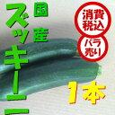 【税込 バラ売り】長野県産他 ズッキーニ 1本(ずっきーに ずっき ズッキ)上越フルーツ