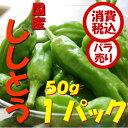 【税込 バラ売り】千葉県産他 ししとう 50g 1パック シシトウ とうがらし(シシトウ しし唐 ししとうがらし 唐辛子)上越フルーツ