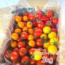 ミニトマト 3kg ピッコロトマト ミックス クール便 送料無料 お取り寄せ 愛知県産 ミニトマト ピッコロトマトが3種入り、生産者より産地直送! 美味しいトマト ミックストマト プチトマト トマトリコピン カロテン