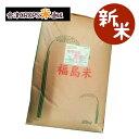 【旬食福来】【新米】 ミルキークイーン 30kg 福島県産 調整済玄米キラッと玄米 令和元年産 送料無料 あす楽
