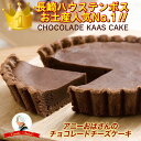 ショコラーデ・カース・ケイク アニーおばさんのチョコレートチーズケーキ(小) ハウステンボス お土産 長崎 お土産 チーズタルト ベイクドチーズケーキ スイーツ お取り寄せ ギフト 冷蔵