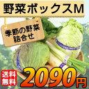 【送料無料】 産地直送 野菜セット Mサイズ【お歳暮・お中元にもどうぞ!】