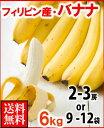 フィリピン産バナナ6kg送料無料¥3,240