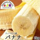 【送料無料】フィリピン産 バナナ 約2kg箱 約12-15本