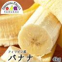 【送料無料】 フィリピン産バナナ 約4kg 約24-30本