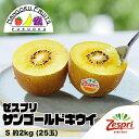 【送料無料】ゼスプリ・サンゴールドキウイ S 約2kg (25玉)