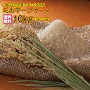 送料無料 広島県産ミルキークイーン 10kg 5kg×2黄袋令和 2年産 1等米