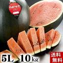 (送料無料)特大でんすけすいか 秀品 5L 10〜11kg 黒い皮の中には赤の果肉、伝助・田助西瓜。ギフトに喜ばれる北海道のデンスケスイカ/でんすけスイカ、旬のフルーツ通販 グルメ食品 フルーツ・果物 スイカ 黒皮スイカ でんすけスイカ(ギフト お中元)