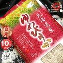 令和元年産 北海道産 ゆめぴりか 玄米 10kg (5kg×2袋セット)<玄米/白米/分づき米>【送料無料】【北海道米 送料込み 米 お米 真空パック選択可】