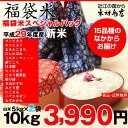 【福袋米 スペシャルパック】 白米5kg×2袋 【平成29年:滋賀県産】【送料無料】