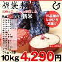 【福袋米 スペシャルパック】 白米5kg×2袋 【平成29年:滋賀県産】【送料無料】(ゆうパックに限る)