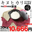 キヌヒカリ 30kg 送料無料 新米 29年 玄米30kgまたは精米済み白米27kg【滋賀県産】(ゆうパックに限る)