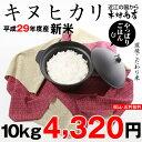 キヌヒカリ 10kg 送料無料 新米 29年【滋賀県産】【あす楽対応!】
