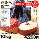 新米! 【福袋米 スペシャルパック】 白米5kg×2袋  【平成30年:滋賀県産】 送料無料