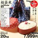 【福袋米】 20kg(10kg×2袋)【平成30年産:滋賀県産】 送料無料