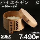 ハナエチゼン 玄米のまま20kgもしくは精米済み白米20kg 送料無料【平成30年・滋賀県産】【西濃運輸に限る】