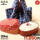 【福袋30】精米済み白米27kg【令和元年:滋賀県産】【送料無料】1袋でのお届けとなります!